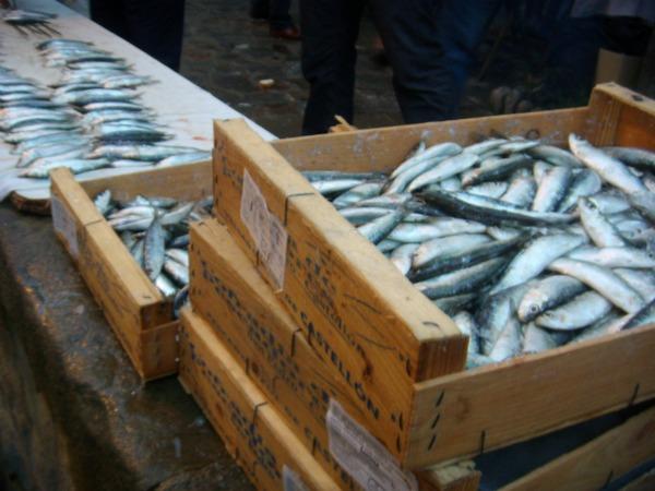 sardinada-cajas-algorta-comerconlila